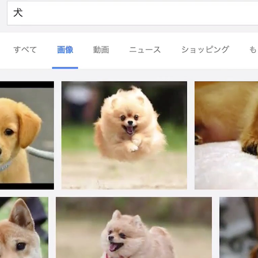 How to do google image search