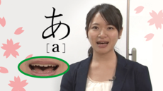 Normal hiragana katakana course