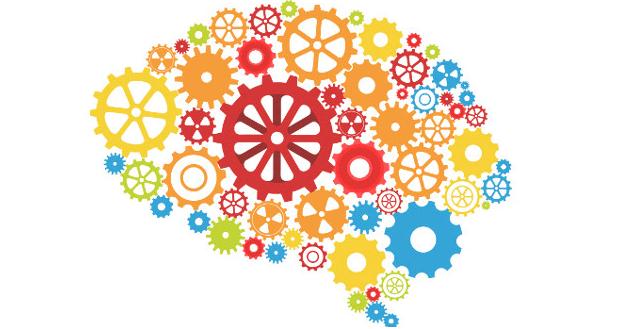 記憶力を司る脳